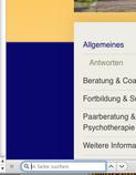 Screenshot: so sieht in Firefox das Suchfeld unterhalb des Browserfensters aus.